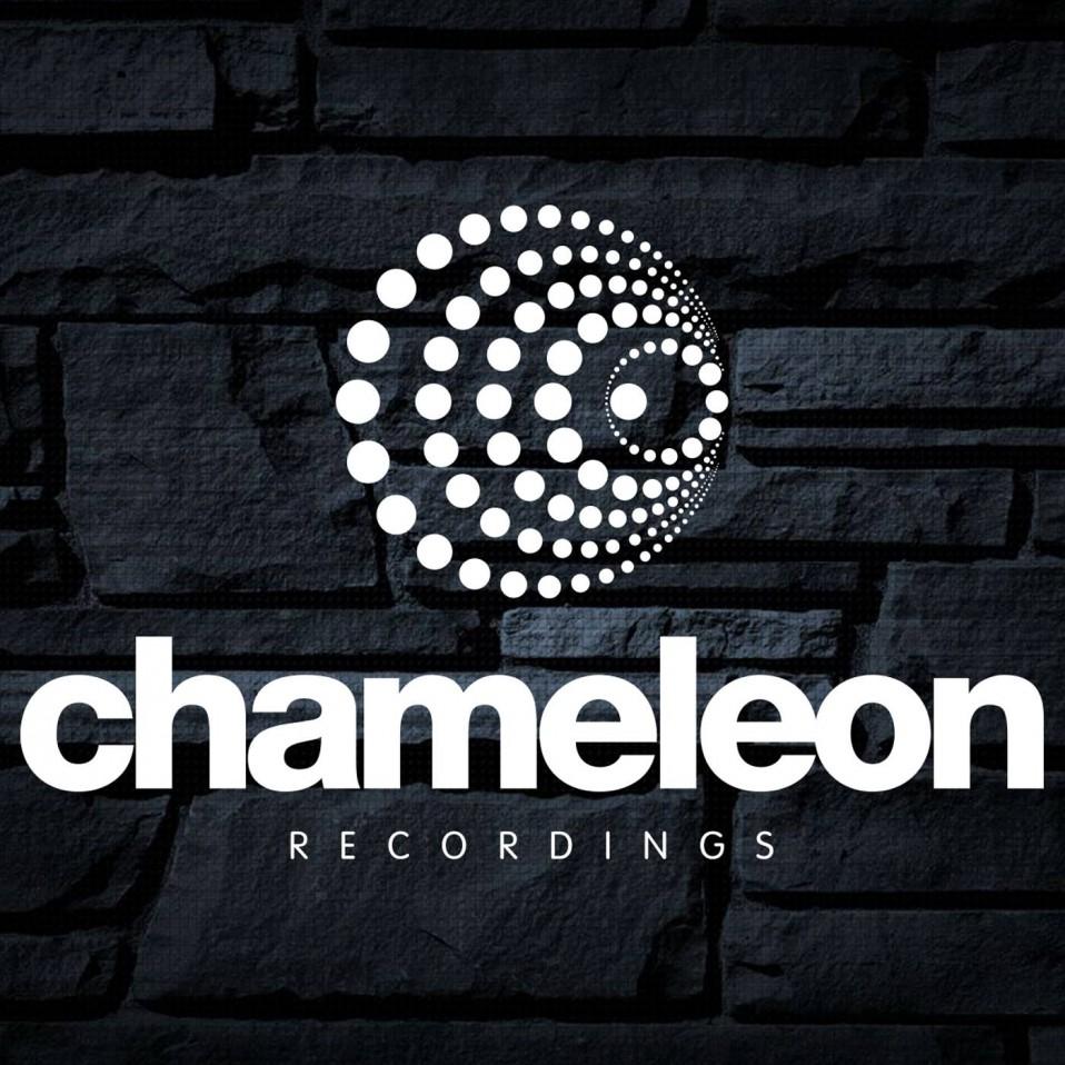 Chameleon  STEVE WARD